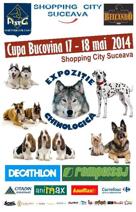 EXPOZIŢIA CHINOLOGICĂ 2014 @ Shopping City Suceava
