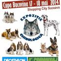 Peste 500 câini înscriși la Expoziția Chinologică 2014 @ Shopping City Suceava